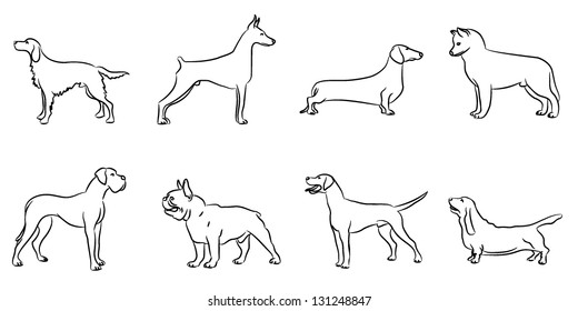 Vector dogs, hand drawn design set.