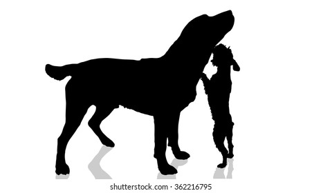 Vector dogs silhouette on a white background.