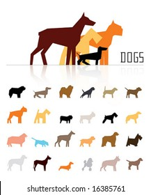 vector dogs of various breeds