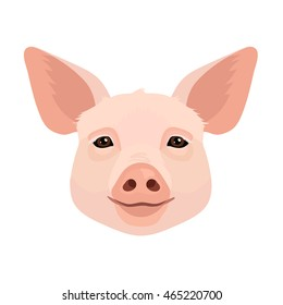 Vector domestic animal pig face icon