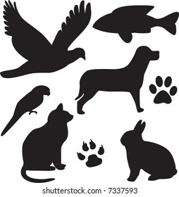 vector domestic pets silhouettes