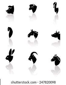 Vector domesticated animals icons set: horse, sheep, cow, chicken, rooster, pig, rabbit, donkey, goat