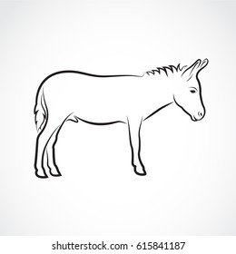 Vector of a donkey on white background. Wild Animals.