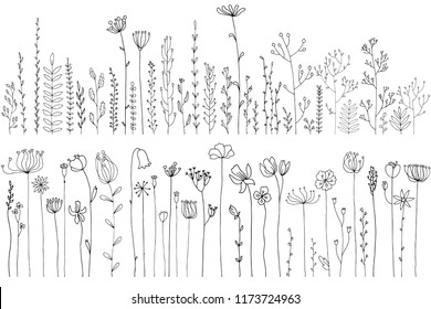 Vector doodle abstract drawing herbs and flowers, floral elements
