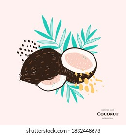 Vector doodle coconut. Hand drawn illustrations.