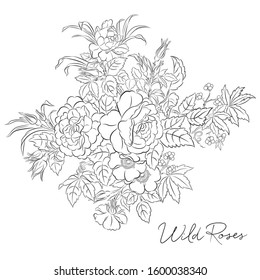 rose coloring page images stock photos