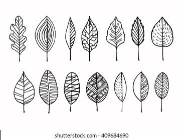 Vector doodle leaves set.