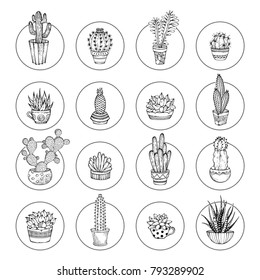Vector doodles cacti and succulent icon set. Various cacti in flowerpots and cups. Linear icons isolated on white background. Round shapes. Can be used to colouring book for adults.
