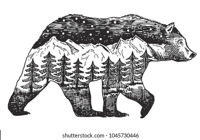 Vector Double exposure, Hand drawn bear for your design, wildlife concept