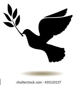 vector dove silhouette with olive branch