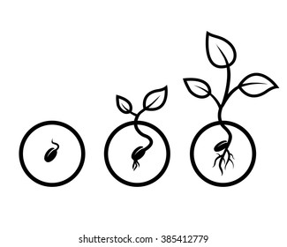 vector drawing black seeds of growth on a white background