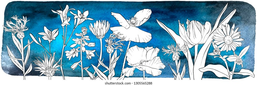 vector drawing border with flowers, floral composition at dark blue watercolor background, hand drawn illustration