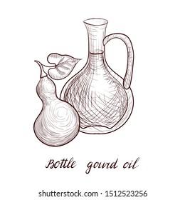 vector drawing bottle gourd oil, bottle of vegetable oil and calabash, hand drawn illustration