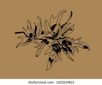 Vector drawing of a branch of hornbeam seeds by black leaves on a brown background. Eco design