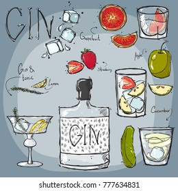 Vector. Drawing by hand. Bottle is transparent with gin. Glasses for vodka and a glass. Ingredients for Cocktails