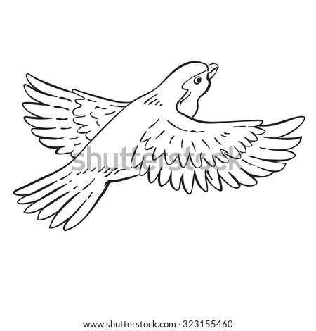 Vector Drawing Cartoon Bird Line Drawing Stock Vector Royalty Free