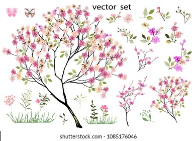 Vector drawing of a flowering garden tree with leaves and flowers. Botanical illustration. The composition of pink flowers, colorful leaves, wild herbs. A set of flowering twigs, buds, flower elements
