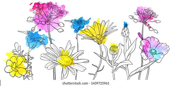 vector drawing flowers with watercolor, floral composition, hand drawn art illustration