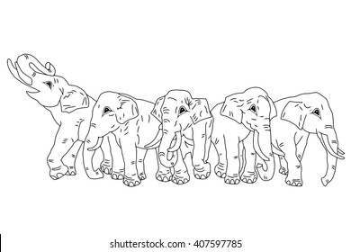 Vector drawing of group of five elephants on the isolated background