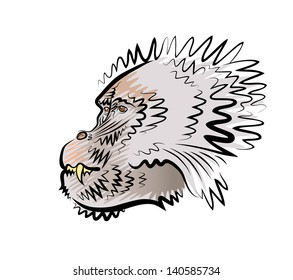 Vector drawing of the head of a monkey in a profile.