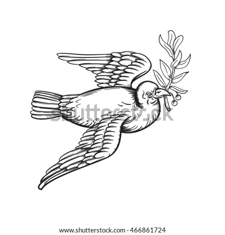 vector drawing peace dove line drawing stock vector royalty free