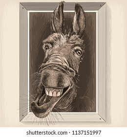 Vector drawing - portrait-cartoon of Crazy Donkey in a wooden frame hanging on a wall