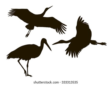 vector drawing silhouettes of three storks