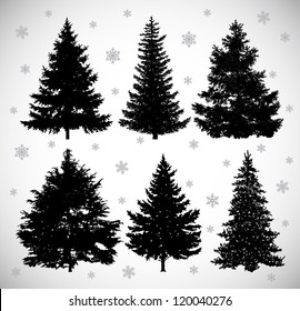 Vector drawing of six black silhouettes spruces against the background of snowflakes.