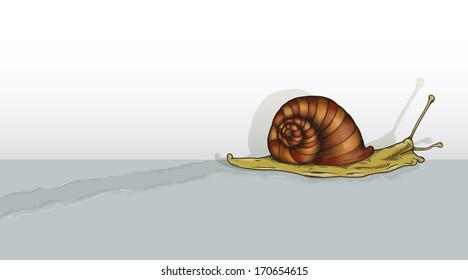 Snail Trail Images, Stock Photos & Vectors | Shutterstock