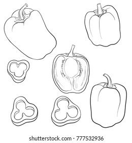 vector drawing sweet peppers, isolated vegetables, hand drawn illustration
