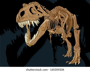 Vector drawing of a T-Rex Skeleton/ T-Rex Skeleton/ Easy to edit layers, drawn anatomically correct based on a Tyrannosaur skeleton, Easy to edit groups no gradients or meshes or blends used.
