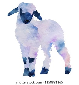 Vector drawing, watercolor Lamb