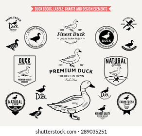 Vector duck labels and design elements