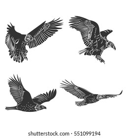Vector eagle and falcon  silhouettes set. Emblem design.