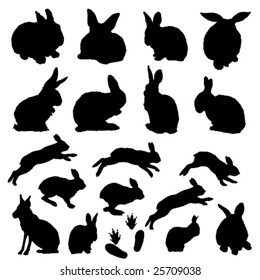 vector easter bunny collection