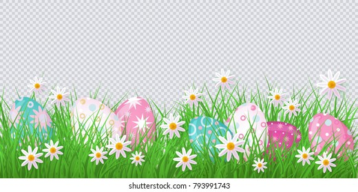 vector easter holiday template on transparent background with spring festive elements - decorated eggs at green grass meadow, daisy flowers for your design. Illustration on green background