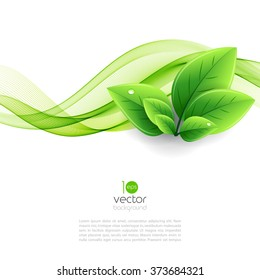 Vector eco leaves and green wave. Abstract ecology background