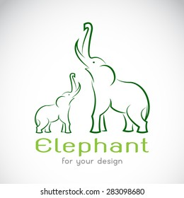 Vector of elephant design on white background,  Vector elephant for your design.