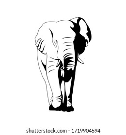 vector elephant. front view. illustration of realistic animal. simple design element for t-shirt, banner, poster, invitation, flyer, placard. one-color print. black and white image