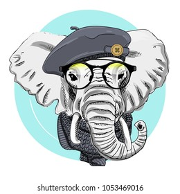 Vector elephant with grey beret and scarf. Hand drawn illustration of dressed elephant.