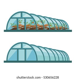 Vector empty greenhouse and with tomatoes