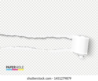 Vector empty realistic tear off paper piece curly scroll with torn hole edges and shadows on a transparent background for a sale advert blank banner revealing advertisement message.