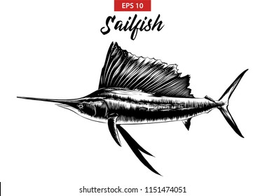 Vector engraved style illustration for posters, decoration and print. Hand drawn sketch of sailfish in black isolated on white background. Detailed vintage etching style drawing.