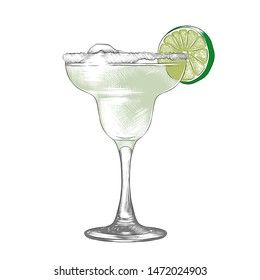 Vector engraved style illustration for posters, decoration and print. Hand drawn sketch of Margarita alcoholic cocktail, colorful isolated on white background. Detailed vintage woodcut style