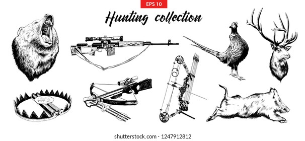 Vector engraved style illustrations for posters, logo, emblem and badge. Hand drawn sketch set of hunting sport equipment, weapon and animals. Detailed vintage hand drawn etching elements.