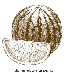 Vector engraving  illustration of  highly detailed hand drawn watermelon and slice isolated on white background