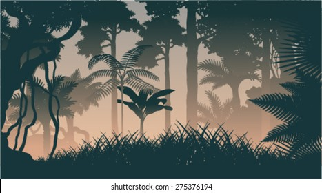 vector evening in jungle