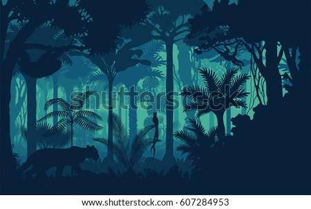 Vector evening tropical rainforest