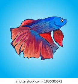 vector exotic Betta fish Halfmoon beautiful color artwork illustration isolated on water background. Design Can for Drawing book or element for product