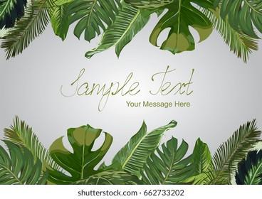 Vector Exotic Leaves Frame